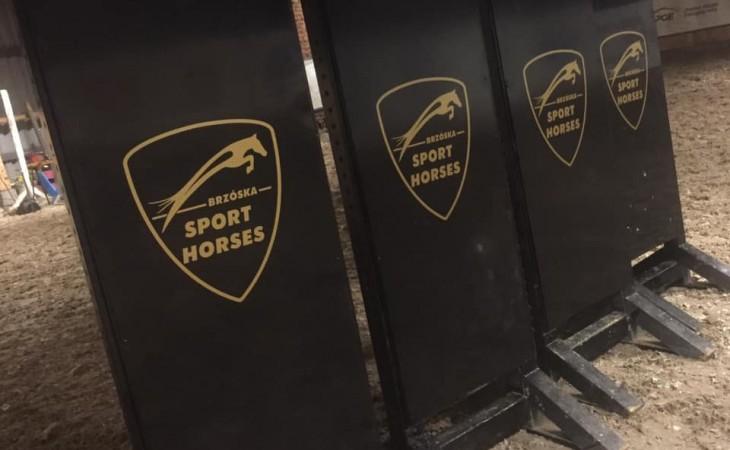 Brzóska Sport Horses
